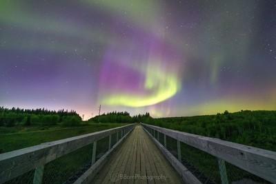A walk under the stars