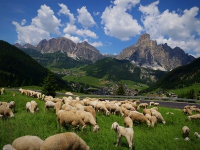 Alpine bliss,..looking down in to Corvara Village..