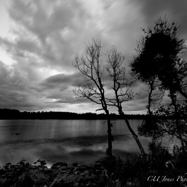 B&W of bushy park boat landing located in Goose Creek, South Carolina