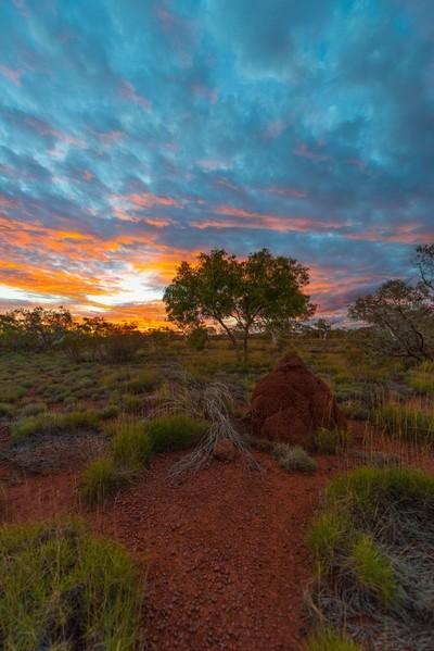 Gunbarrell Sunset