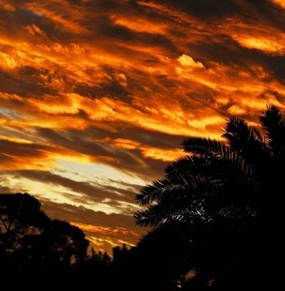 Strong Sunrise