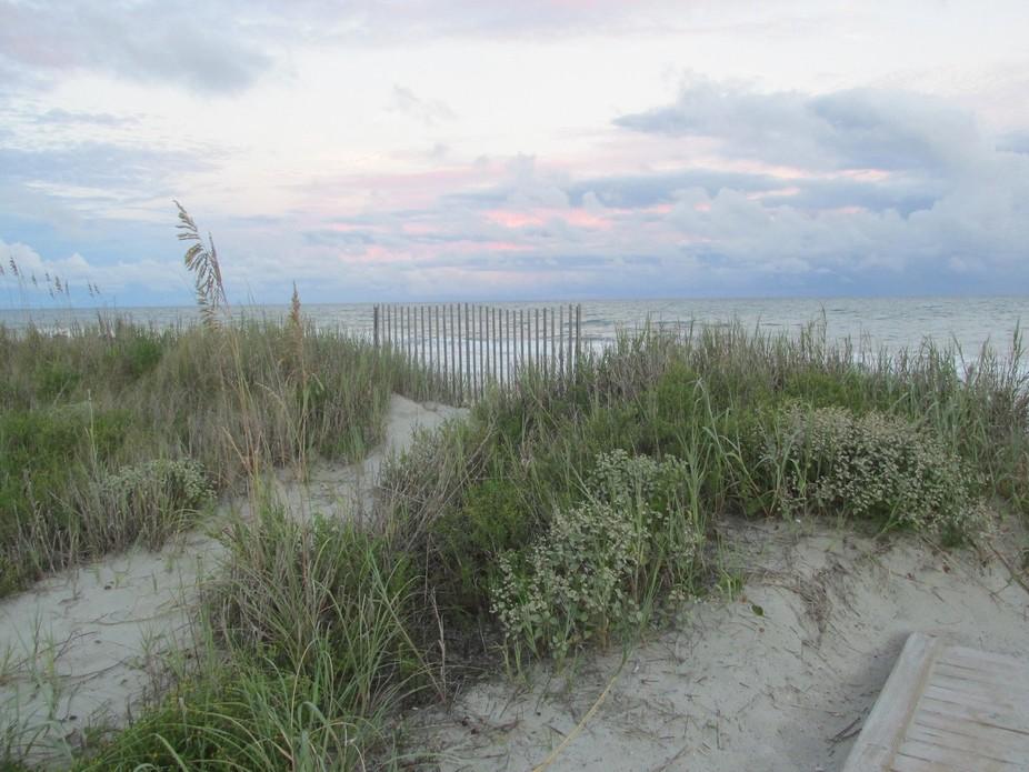 The beautiful sand and sea oats of the Atlantic Coast.