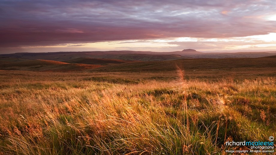 An evening view across the rolling uplands of the Antrim Hills towards Slemish Mountain, which is...