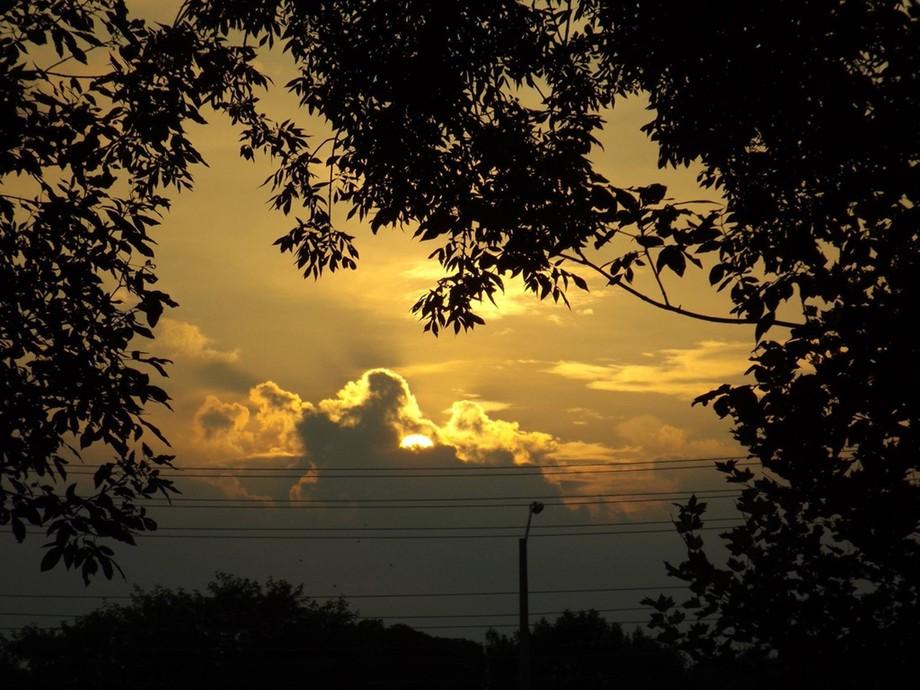 Glorious Evening