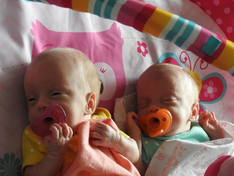 these two precious girls are my granddaughters.  They were two months premature and 9 weeks old w...