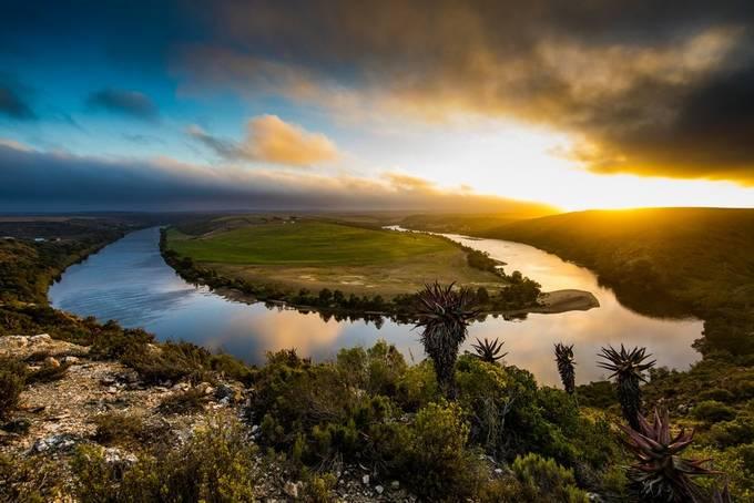 Malgas by GideonMalherbe - Streams In Nature Photo Contest
