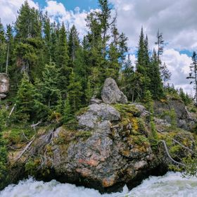 The Yellowstone River makes a sharp turn past this rock outcropping then drops off into waterfalls. The color of the rocks with the lichen on the...