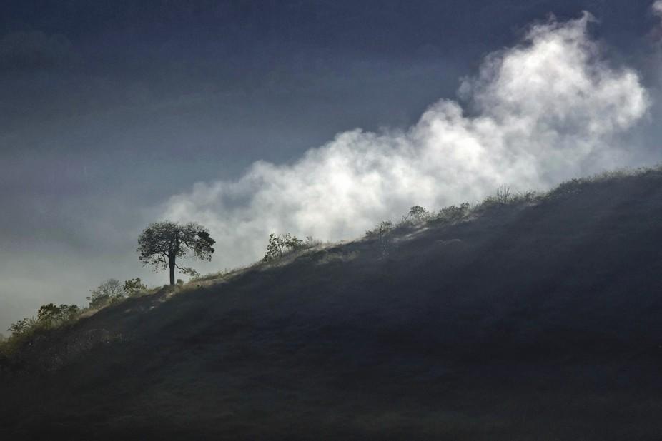 Dawn with fog-IMG_2270-B
