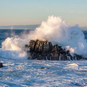 My favorite spot in the Monterey California area is Point Pinos.  When I lived there, I would spend hours looking in the tide pools and watching ...