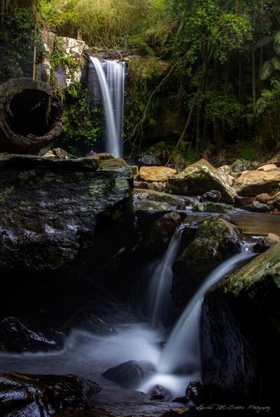 **Curtis Falls, Mt Tamborine**
