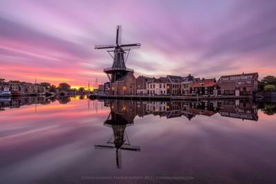 Good morning Haarlem