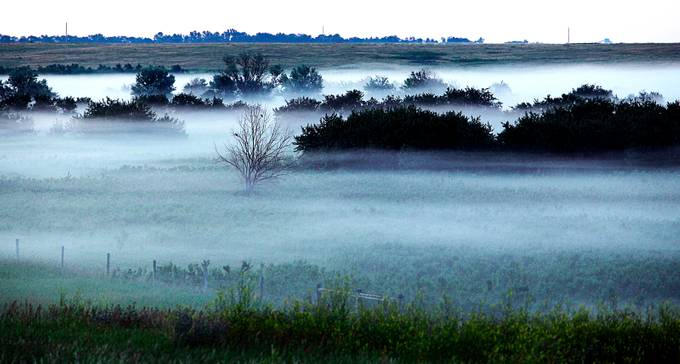 Early morning rolling fog through the plains.
