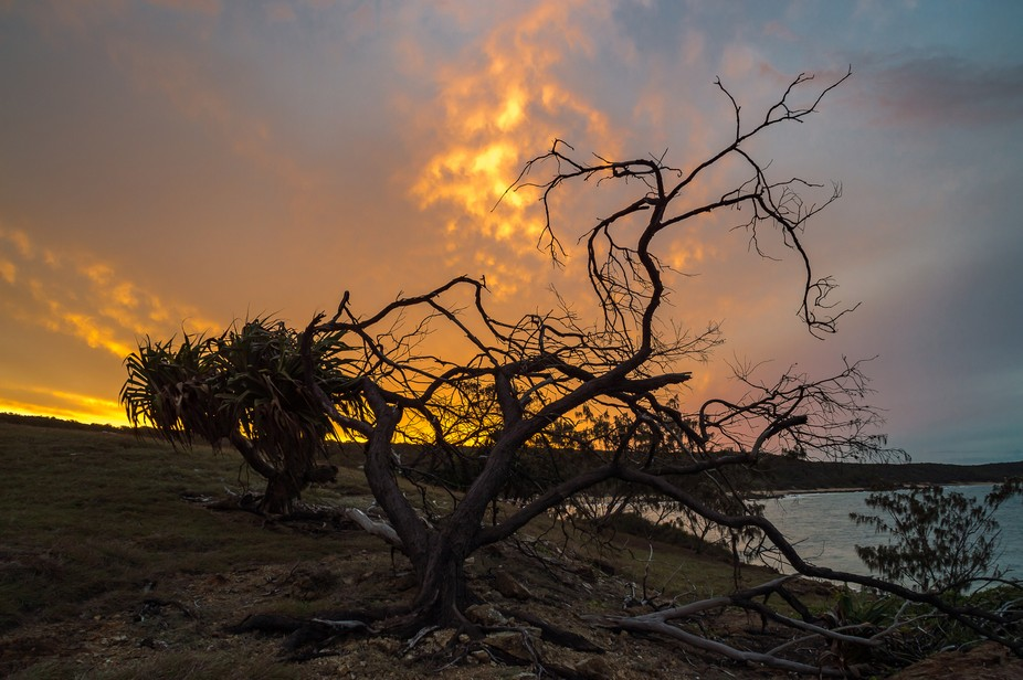 Looking back at sunset from Rocky Point , Agnes Water , Queensland. The sky looked to be on fire ...