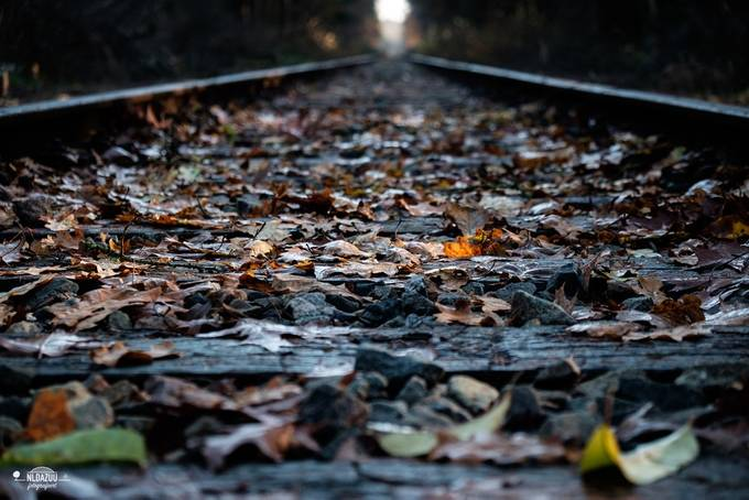 The empty track ahead by davezuuring - Empty Railways Photo Contest