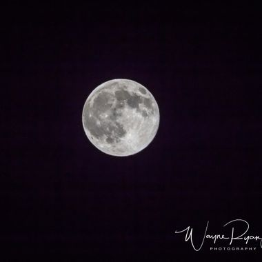 Nice shot of the moon, tomorrow we're supposed to have a blood moon (supposedly)