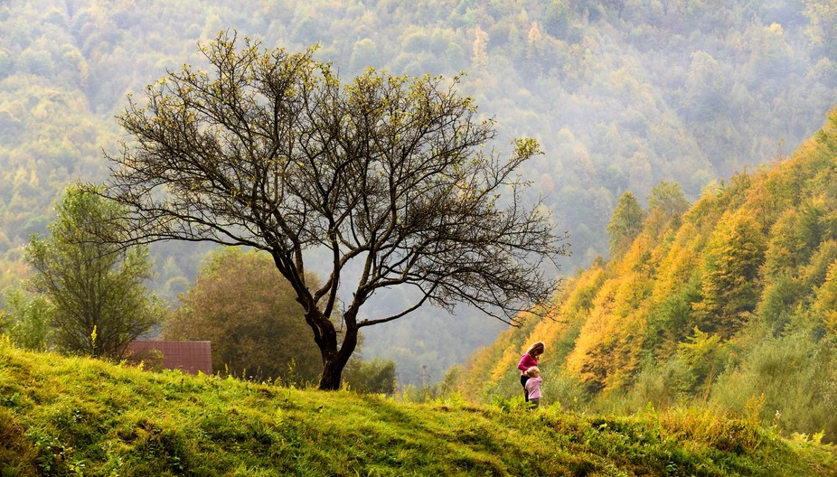 Nearly the end of Autumn and two sisters stop playing in this tree to watch the forest train pass by.  This tree and farm are located far up the Wasser Valley in the Carpathian mountains of Roumania.
