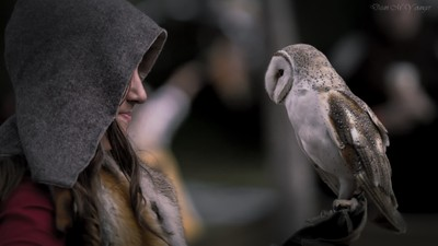 The Maiden & the Owl