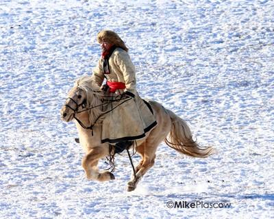 Mongolian Horseman on the gallup