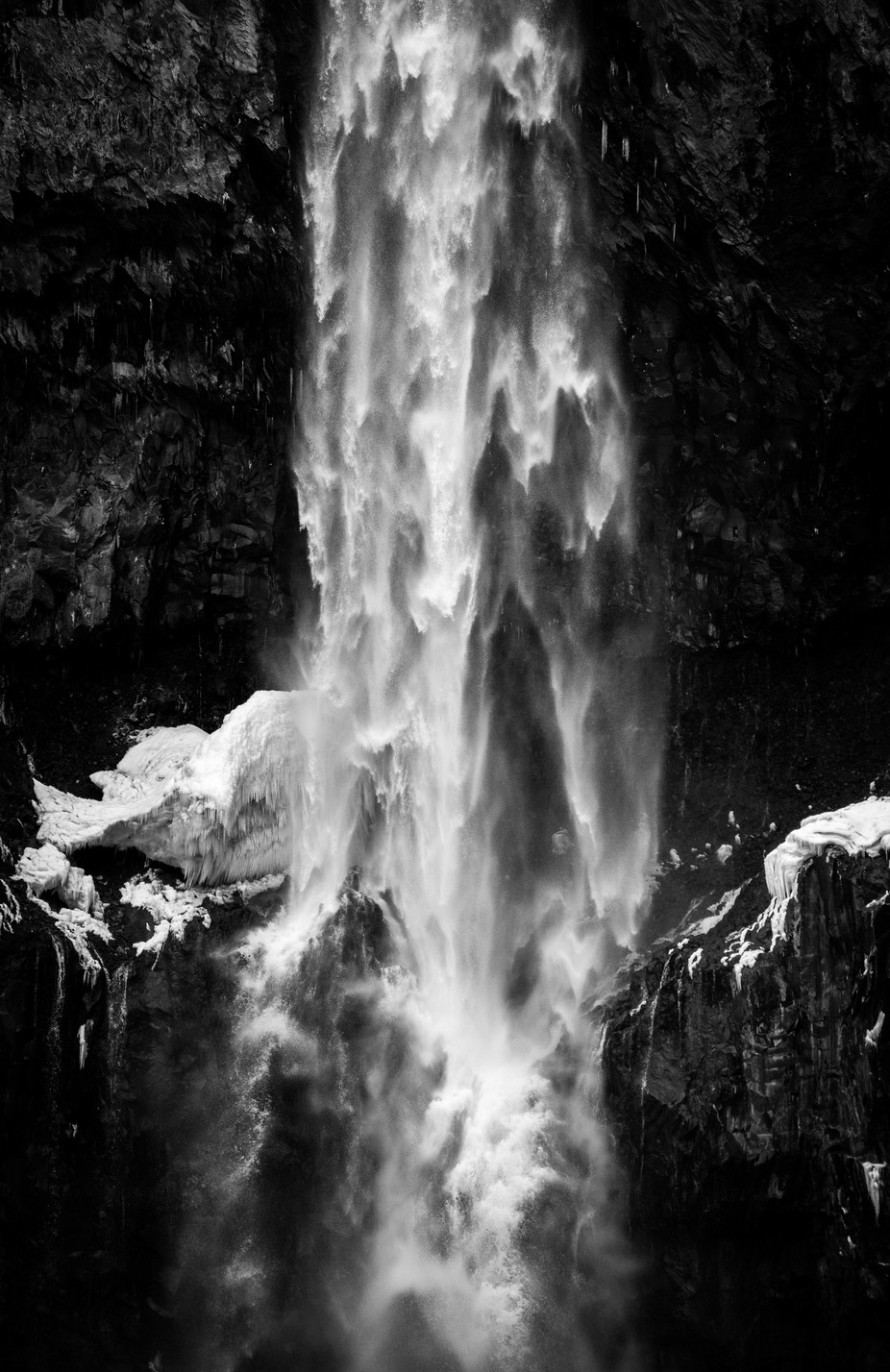 Power of Nature by wojciech_toman - Everything In Black And White Photo Contest
