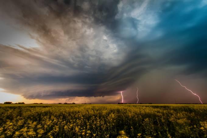 Prairie Fire by dyanpratt - Celebrating Nature Photo Contest Vol 4