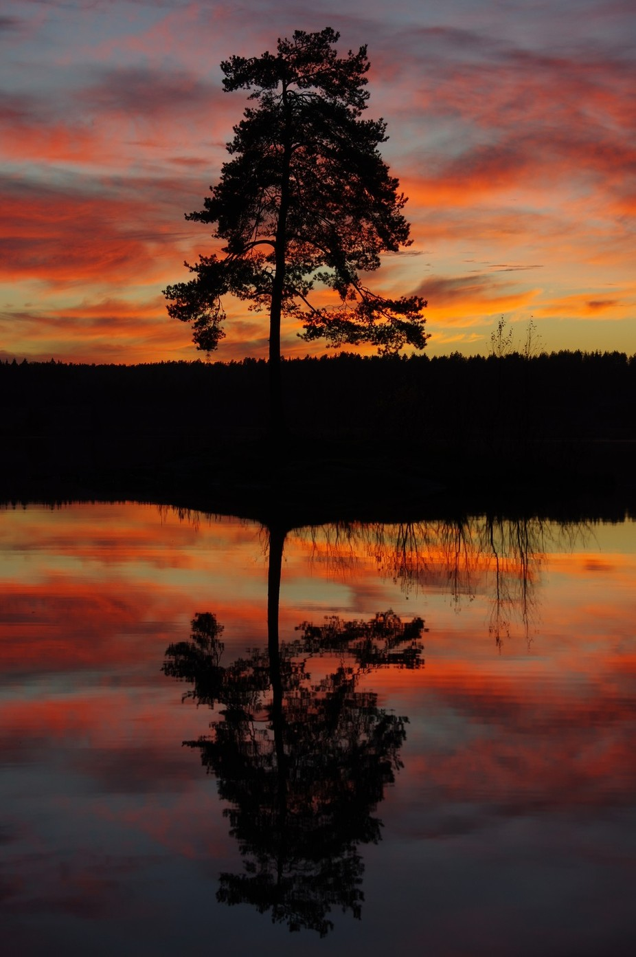 Sunset by the lake by Ivar-Ola - Tree Silhouettes Photo Contest