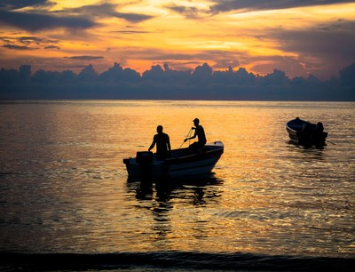 A Night of Fishing