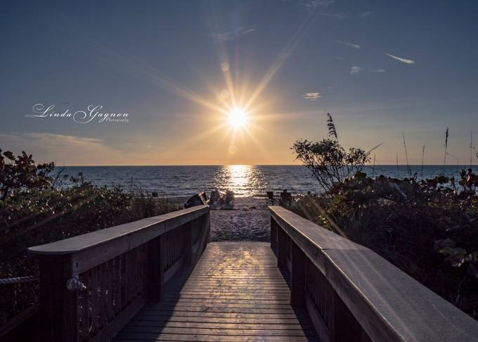 Path to the Sunset, Florida by lindagagnon - Flares And Glitter Photo Contest