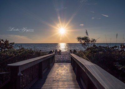 Path to the Sunset, Florida