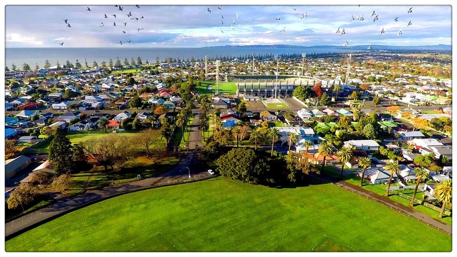 Photo taken from drone over Nelson Park