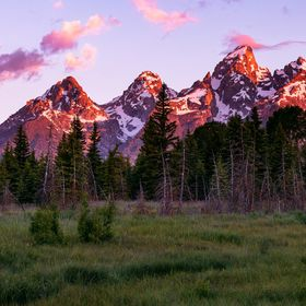 The rising sun paints the Cathedral Group of the Teton Range behind a meadow in Grand Teton National Park.