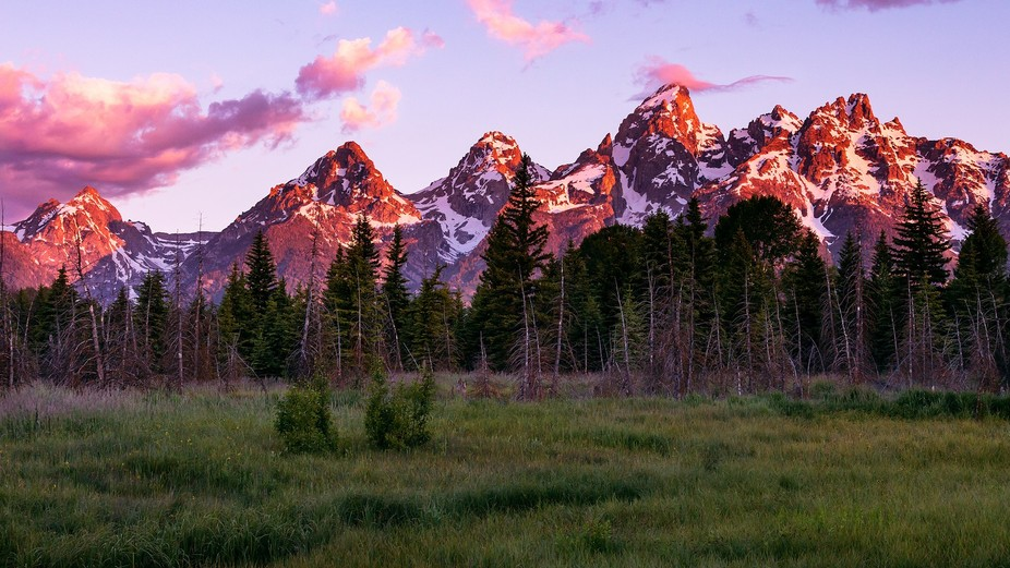 The rising sun paints the Cathedral Group of the Teton Range behind a meadow in Grand Teton Natio...