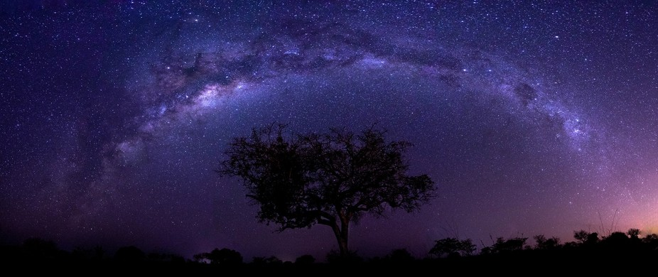 I spent an evening out in the wild african bush photographing the amazing stars we are privileged...