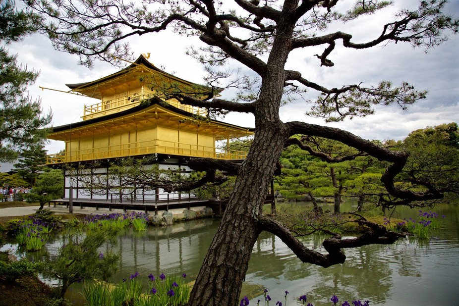 Golden Palace, Kyoto, Japan