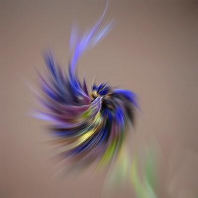 Radial Blur Twirl Rough Pastels