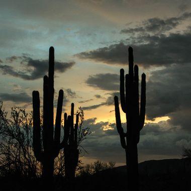 Evening after the storm - White Tanks Park Arizona