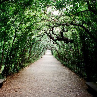 Florence path