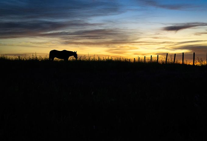 Dodge City by alishaclarke - Rural Vistas Photo Contest