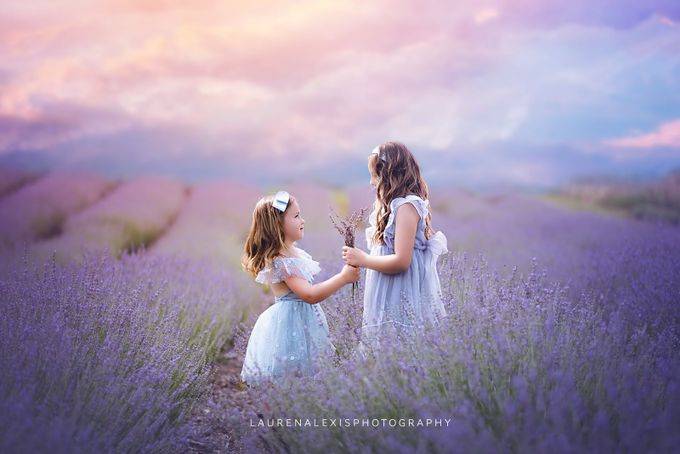 Lavender Friends by laurenapetersen - Thank You Photo Contest