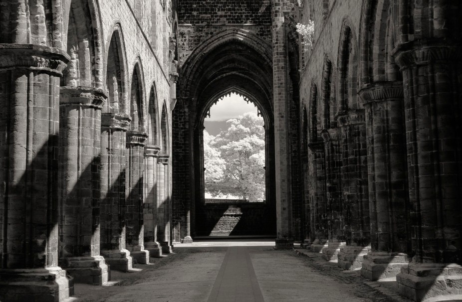 Kirkstall Abbey in infrared.