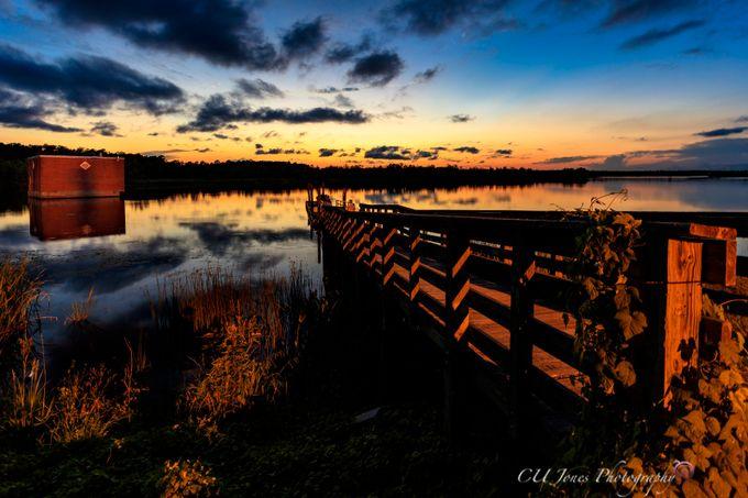 Sunset Bushy Park Boatlanding on the fresh water side of the landing. This landing is on Goose Creek, South Carolina.