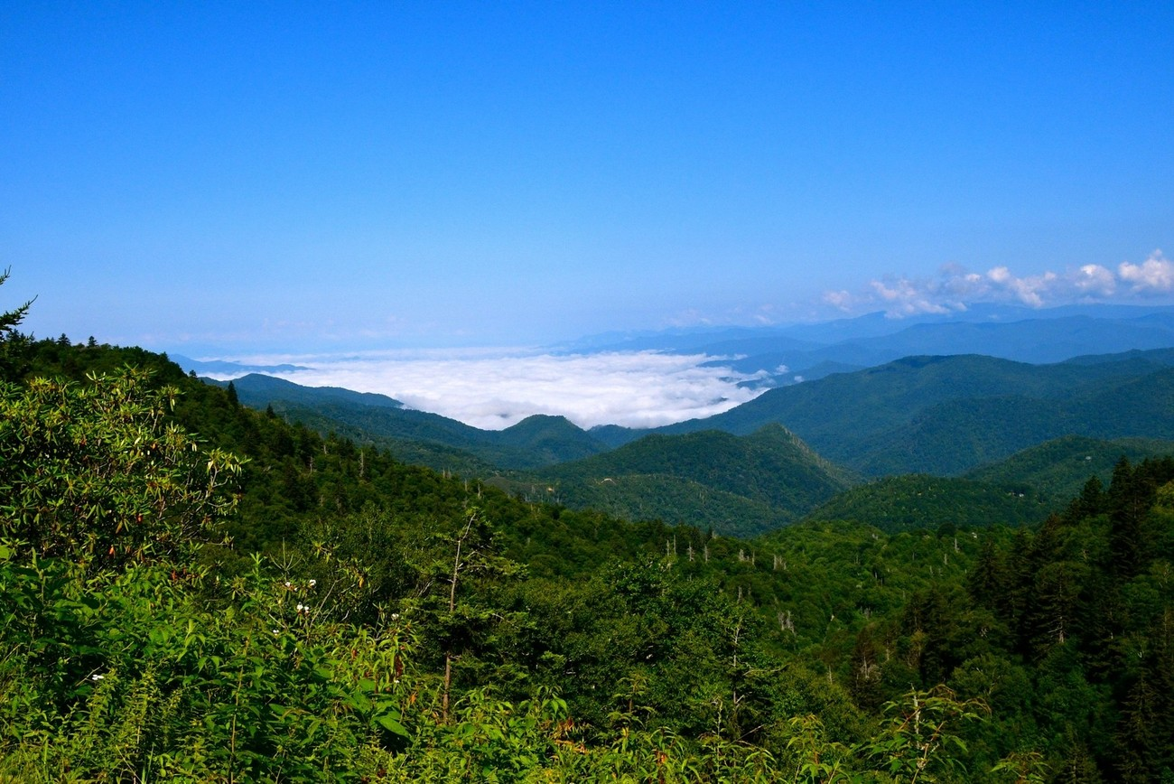 Low hanging cloud in the mountains along the Blue Ridge Parkway