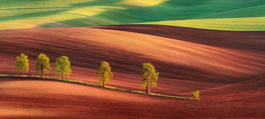 The first panorama of southern Moravia of this year. Well known alley, but I guess I will love th...