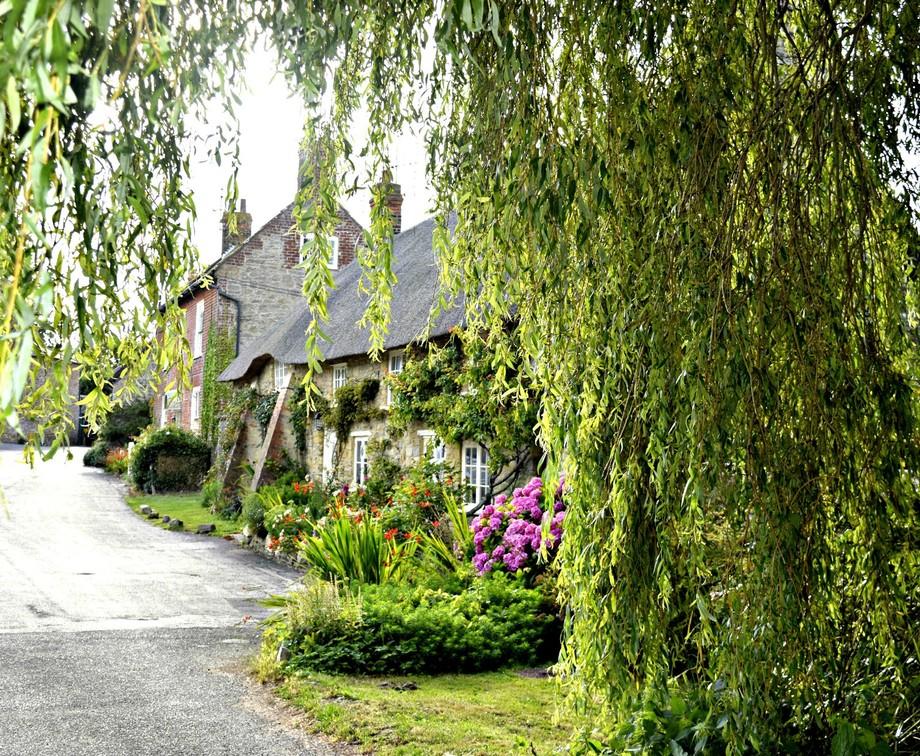burton bradstock cottages
