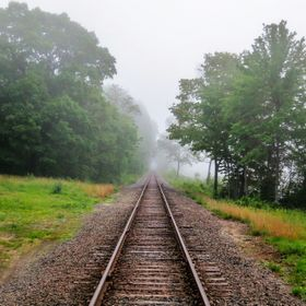 A rural New England track through the morning fog.