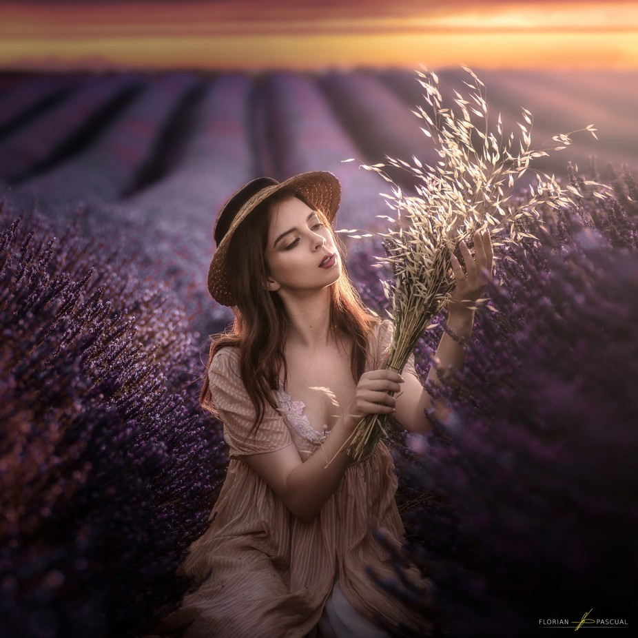 Valensole. by Florianpascual - Covers Photo Contest Vol 41
