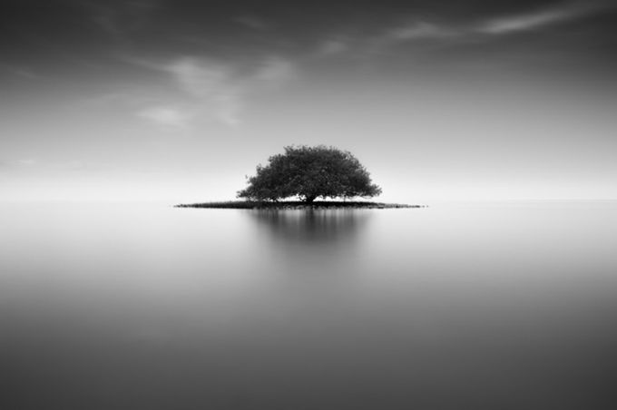 Tree Island   by Ricky303 - A Lonely Tree Photo Contest