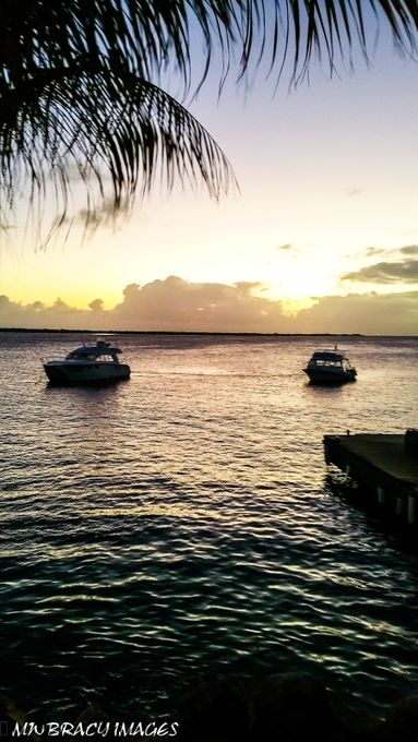 On a dive trip to Bonaire in the Netherland Antilles I went to bed and woke up to this view for seven days