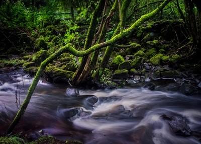 Brecon Branch Long Exposure