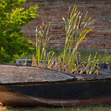 While walking in Burano happened across this old boat with unusal occupants.