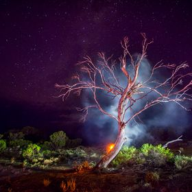This image was taken while camping in the Gawler Ranges, South Australia. The tree is lit up red by another fire behind the camera. The smoke was...